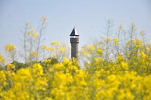 Wartbergturm Alzey - Foto: SPD/mth